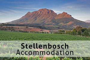 Stellenbosch accommodation