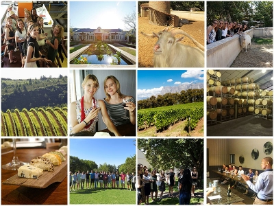 Group Wine Tour from Cape Town